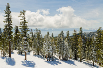 View from alpine resort at fabulous Lake Tahoe