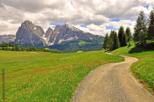 Winding road in Alps © Arseniy Krasnevsky