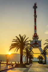 Crane and Palm Tree in the sunset