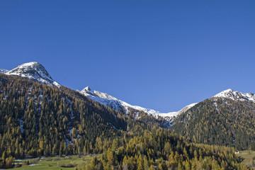 Herbst im Albulatal