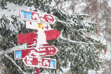 signal paths snow in switzerland