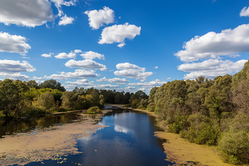 Landscape river and forest on a background of blue sky with clou