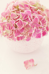 Pink hydrangea flowers in a beautiful vase on a table .
