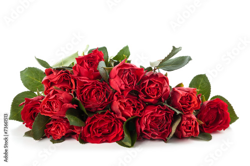 Staande foto Roses Red roses.
