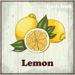Vintage hand drawing illustration of a lemon