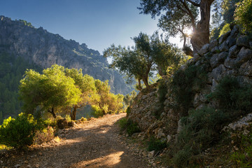 Tramuntana Gebirge auf Mallorca