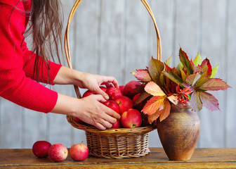 Still life with apples in a basket with autumn leaves