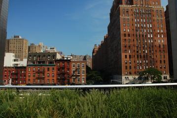 High Line, Manhattan, NYC