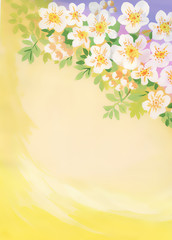 Watercolor cherry blossom with copyspace