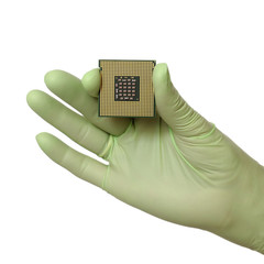 Human hand in glove hold computer chip micro processor, isolated
