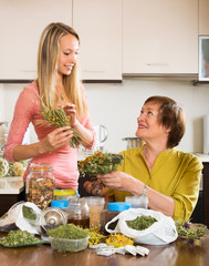 Womans with medicinal herbs