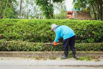 Woman cut bush clippers