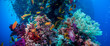 Colorful underwater reef with coral and sponges - 73681156