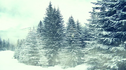 Snowing on trees. Winter in mountains. Seamless