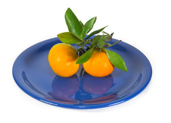 Tangerines with branch on dark blue plate