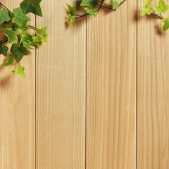 Ivy Plant on Wooden Plank Background