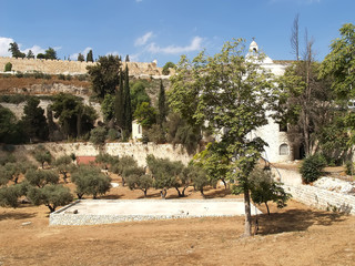 View of the Temple mountain. Jerusalem, Israel