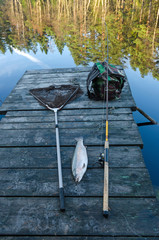Autumn fishing composition with trout trophy