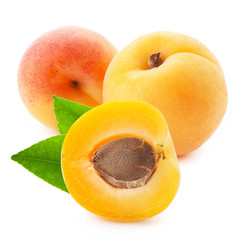 Apricot fruits with leaves isolated on white background.
