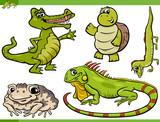 reptiles and amphibians cartoon set poster