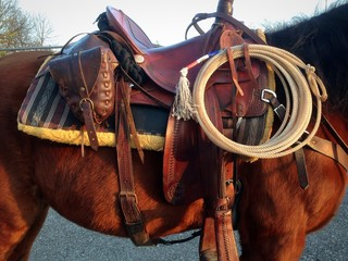 Western tack and horse equipment, finimenti per cavallo