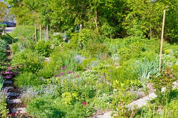 Natürlicher Bauerngarten im Frühling