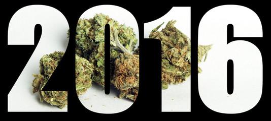 Marijuana 2016