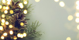 christmas tree light - 73694133
