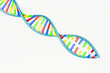 canvas print picture - DNA replication