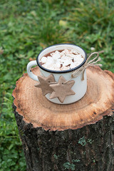 Hot Chocolate with Meringues and Cinnamon Cookies on a Log