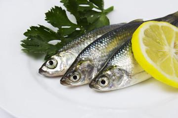 fresh sardines with lemon