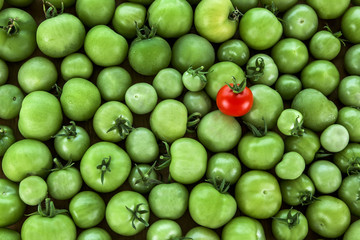 Odd One Out? Business Concept - different, original, standing ou