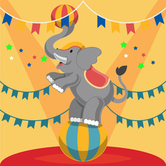 Circus elephant. Vector flat illustrationarena