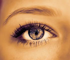 Human eye close-up. Color toned image.