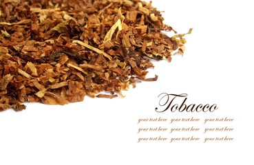 Different kinds tobacco leaves on a white background, with space