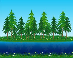 Coniferous riverside wood