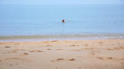 Beautiful Woman Bathing in Tropical Sea. Slow Motion.