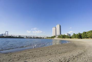 快晴青空 お台場海浜公園