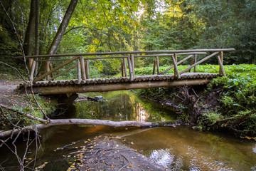 bridge of logs