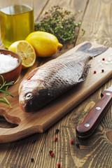 Crucian, fish