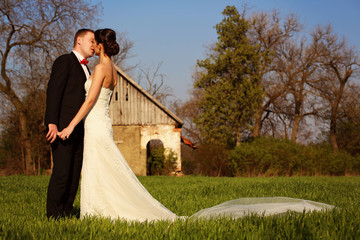 Bride and groom in a sunny day on a field