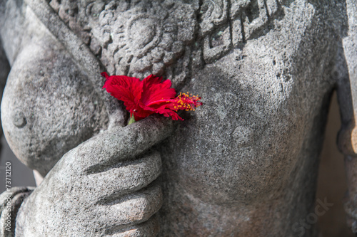 Bali flower - 73712120