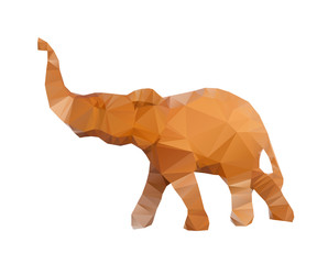Polygonal illustration of head of elephant isolated