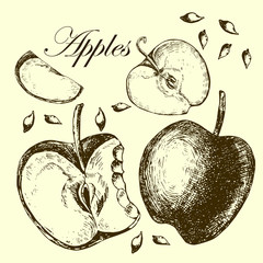Set of drawing apples.  Illustrations.
