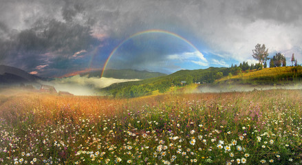 panorama of mountain meadows in Transcarpathia