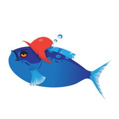 Fish trägt Hut