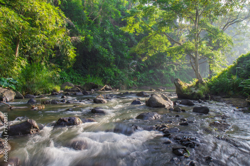 Foto op Plexiglas Indonesië Morning river in Bali