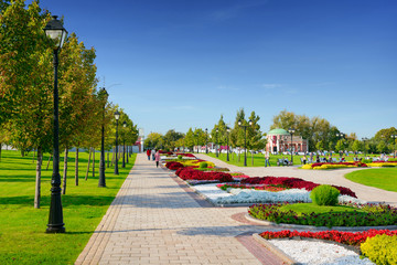Green city park in sunny summer day