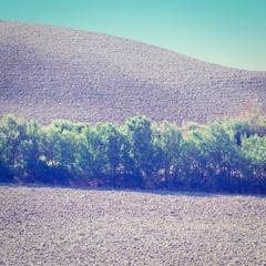 Sloping Hills