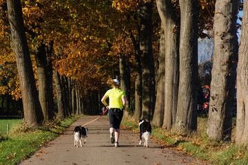 woman running with two dogs on country road